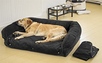 Our Memory Foam Bolster Dog Bed with snap-off pads is ideal for an older or incontinent pet.
