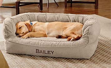 You dog will enjoy superior joint and muscle health resting in our Memory Foam Couch Dog Bed.