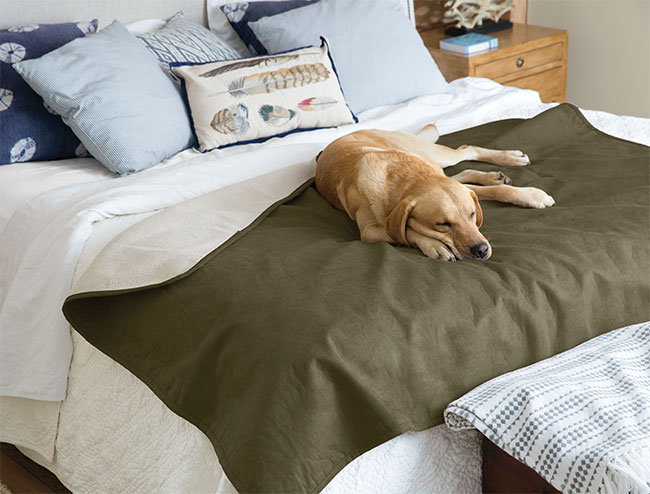 An easy-care, yet supremely soft and cuddly reversible throw blanket: fine fabric on one side and bonded Berber fleece on the other. Place it on a couch, over a chair, at the end of your bed, or anywhere your dog likes to snuggle that warrants a little protection from pet hair, dirt, and moisture. A special water-resistant material helps protect your furniture and bedding. Matches our lightweight coverlet. Available in two sizes. Polyester fabric and fleece. Washable. Imported.