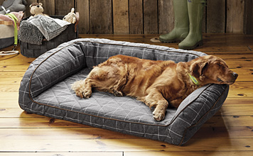 The Orvis AirFoam Bolster Dog Bed provides unmatched comfort at any stage in your dog's life.