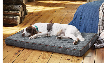 Your favorite canine will lounge in absolute comfort on our Orvis AirFoam Platform Dog Bed.