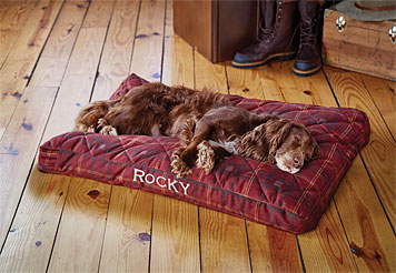 Our luxurious ComfortFill Platform Dog Bed is perfect for big dogs who love to sprawl.