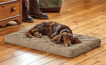 Provide the support your canine companion needs with our Orvis Memory Foam Platform Dog Bed.