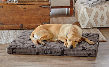 Show your pooch how much you care with our Orvis memory foam platform dog bed.