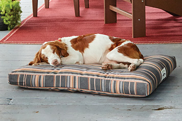 Rain or shine, our Sunbrella Indoor/Outdoor Platform Dog Bed resists all kinds of weather.