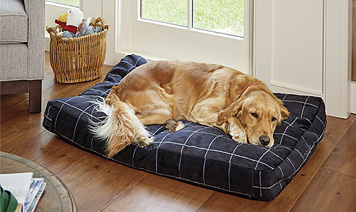 Soft, cozy—and totally chew-proof—our ToughChew ComfortFill Platform Dog Bed can do it all.