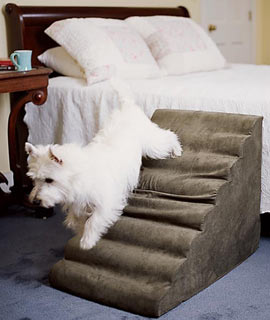 Lightweight Portable Pet Steps