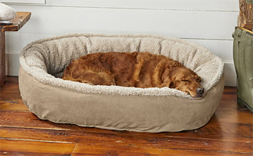 The Orvis Memory Foam Wraparound Dog Bed with Fleece offers reassuring comfort for your pet.