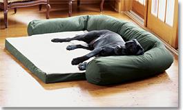 Deep Dish Dog's Nest with Teflon®