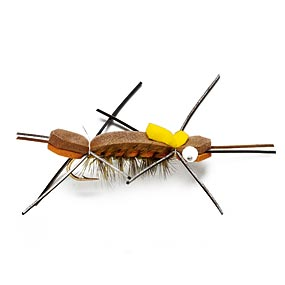 Grasshoppers crickets bugs for fishing from fishshootouts for Fishing with crickets