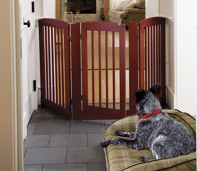 Freestanding Three-panel Gate With Door / 24