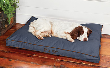 The familiar rectangular Comfortfill Dog's Nest® platform dog bed comes in three fill types.
