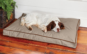 Even fussy canines will sleep soundly on the Orvis ComfortFill-Eco Platform Dog's Nest bed.