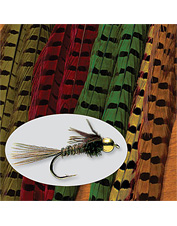 Fly tying with pheasant tail feathers produces proven fish catching flies.