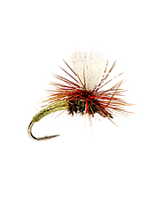 With its highly visible poly wing post and low-riding realistic profile, the Klinkhammer is a sure winner in many mayfly and caddis hatches.