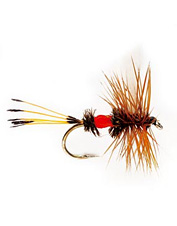 Brook trout are especially fond of this fly.