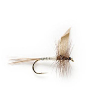 Keep rows of these dry flies in your trout box so you're always ready for the hatch.