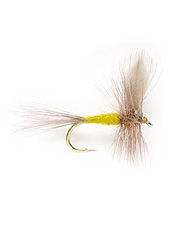 A truly simple and proportional dry fly for trout fishing.