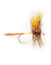 Rely on the proven effectiveness of the March Brown when fishing a mayfly hatch.