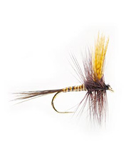 No matter what the season, the Gordon dry fly brings on the fish.
