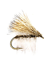 One of the most popular dry flies