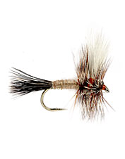 This is an excellent fast-water Hairwing fly with lighter and buggier colors that trout love.
