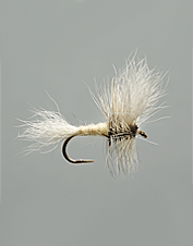 This famous and versatile White Wulff pattern is a top brook trout fly on ponds in Maine and Canada.