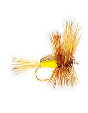 Imitate various hatches with these big trout dry flies.