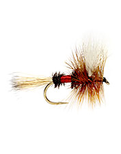 A legendary dry fly, great for prospecting
