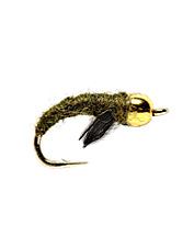 Catch trout around the world during a caddis hatch with these simple pupae flies.