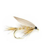 This classic winged wet fly is similar to the hare's ear nymph, but designed to be fished on the swing.