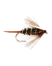 Achieve more success when you fly fish two of these nymphs.
