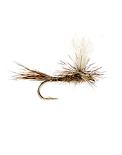 One of the most productive dry flies for slower currents