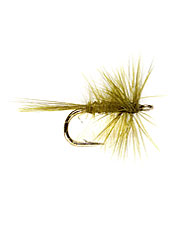Keep multiple midge fly patterns handy to cover different fishing situations.