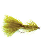 Keep the Wooly Bugger streamer fly on hand if you want to land trout wherever they are.