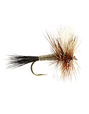 Great high-floating hairwing flies for rough water riffles.