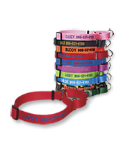Safely maintain control of your dog with a Personalized Martingale No-Pull Collar.