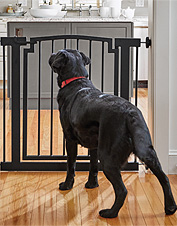 Our wide metal dog gate offers incredible durability and walk-through convenience.