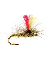 Try this bright indicator Mayfly for more visibility and easier fly fishing.