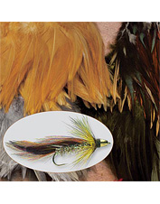Perfectly shaped fly-tying hackle for tying any salmon or steelhead streamer fly.