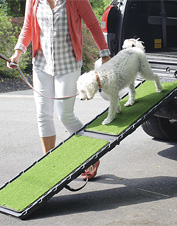 Our grass surface dog ramp provides security and convenience for you and your pet.