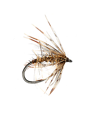 Trout eat this soft hackle fly up, down or across stream.