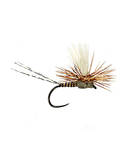 Fool selective trout in clear water with this quill body mayfly.