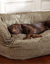 Lounger Deep Dish Dog Bed