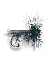 You'll appreciate the dynamic realism of this caddis fly.