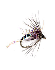 This caddis fly pattern is a realistic emerger.