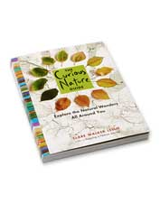<i>The Curious Nature Guide</i> invites readers to open their senses to the world around them.