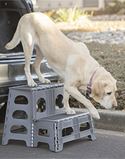Make it easier for your dog to come up with the Folding 2-Step Assist stairs by PetSTEP.