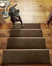 Our Recycled Water Trapper Diamond Stair Treads give you indoor/outdoor dirt-stopping power.