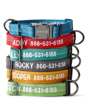 The Tough Trail Dog Collar is ready for every adventure with your dog.